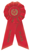 Double Ribbon